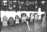1909 židovský hřbitov
