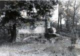 1977 Vášů - Haltýř
